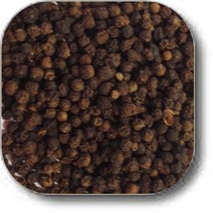 black pepper whole