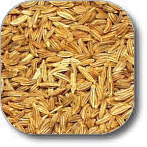 caraway-seed-whole