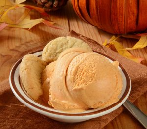 Pumpkin Spice Ice Cream
