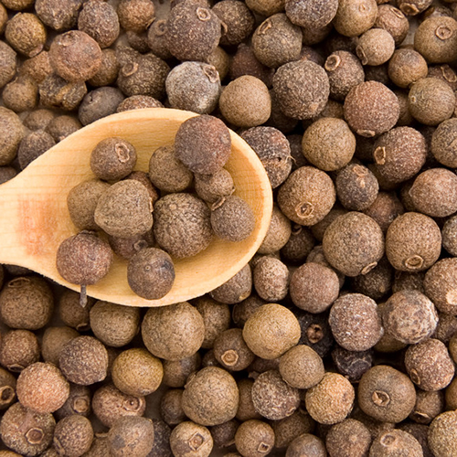 Where did the name Allspice come from?