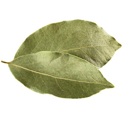 Are Bay Leaves Dangerous to eat?