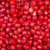 pink peppercorn facts