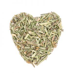 Rosemary a symbol of love