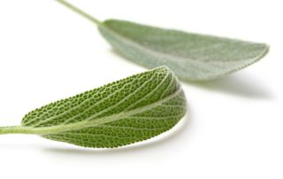 difference between ground and rubbed sage