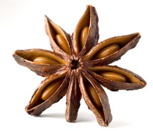 Anise and Star Anise